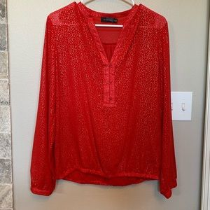 Red blouse from the Limited